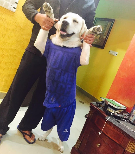 Deepak with Denzo dog